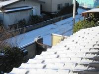 朝の雪.jpg