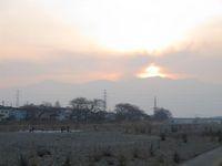 松川の白鳥夕暮れ.jpg