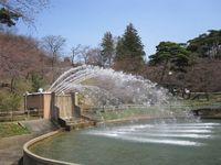 信夫山噴水.jpg
