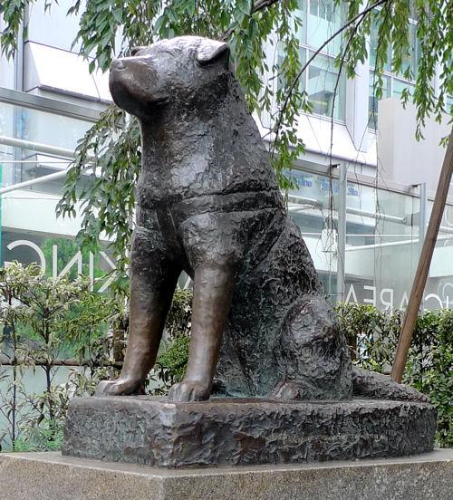 渋谷駅前の忠犬ハチ公像 - 無料写真検索fotoq