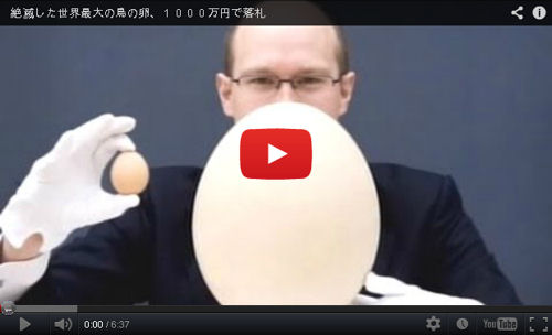 世界最大の卵(動画)