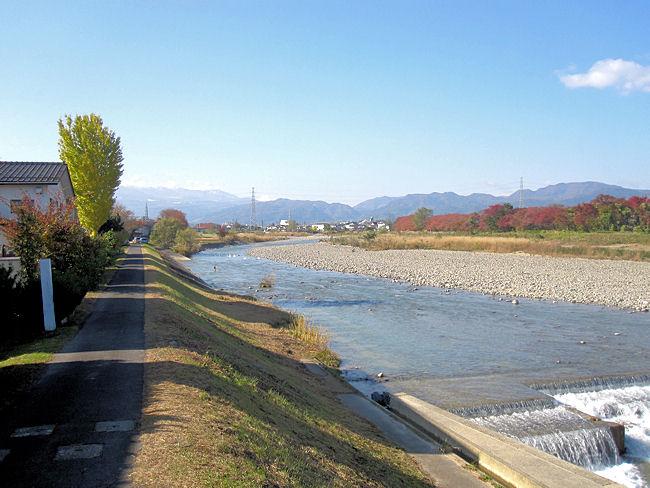 松川の白鳥飛来地全景