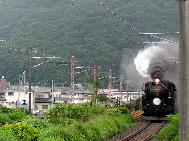 SL福島プレDC号C61の写真(2014年6月28日)