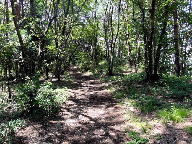 福島市・信夫山(しのぶやま)の烏ヶ崎展望デッキ(道標から左に整備された山道を登る)